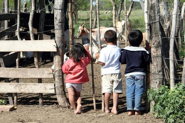 La comunidad qom de Campo Medina, en Chaco